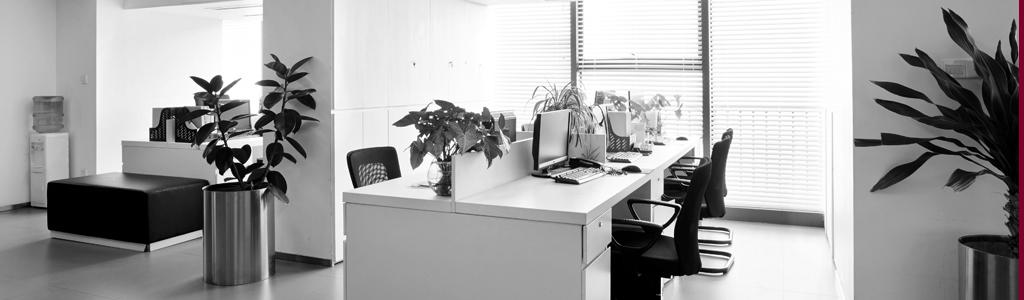 Lichtdurchflutete Büroräume